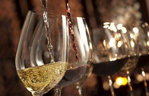 dégustation vins primeurs